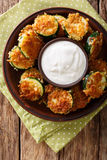 Fried zucchini slices in breaded Panko with sour cream close-up. Royalty Free Stock Photos