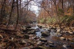 Frieden auf Reedy Creek Lizenzfreies Stockbild