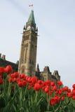 Friedenskontrollturm und -tulpen Lizenzfreie Stockfotografie