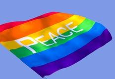 Friedensmarkierungsfahne in den Himmeln Lizenzfreies Stockbild