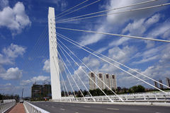 Friedensparkbrücke Stockfotografie