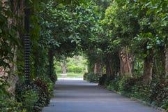Friedensstraße im Park stockbilder