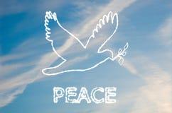 Friedenstaube Stockbild