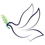 Friedenstaube Lizenzfreies Stockbild