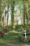 Friedhof in forrest stockfotografie