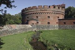 Friedrichs Karl Dons torn (museet av bärnsten) Kaliningrad Ryssland Royaltyfria Bilder