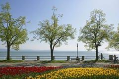 Friedrichshafen på sjön Constance, Baden-Wuurttemberg Arkivfoto