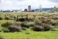 Friegue la tierra en Washington State occidental Fotos de archivo libres de regalías