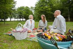 Friencds Barbecue Picnic Royalty Free Stock Photo