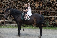 Friend, companion, friendship. Girls ride on horse on summer day. Equine therapy, recreation concept. Children smile in rider saddle on animal back. Sport royalty free stock photography