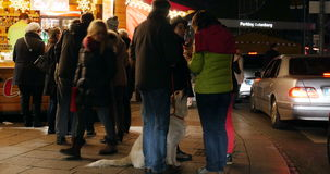 Friend with a dog at Christmas market stock video