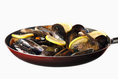 Friend mussels with lemon Stock Photography