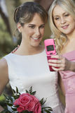 Friend Taking Self Portrait With Beautiful Bride Stock Image