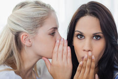 Friend telling secret to brunette woman Royalty Free Stock Images