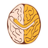 Friendly brain Royalty Free Stock Photo
