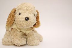 Friendly And Cheerful Dog Doll Stock Image