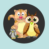 Friendly company. Cat, owl and titmouse.  Friendship. - Stock ve Stock Photography