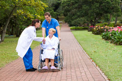 Friendly doctor greeting patient. A friendly female doctor greeting senior patient in wheelchair being pushed by male nurse in park Royalty Free Stock Image