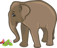 Friendly elephant Royalty Free Stock Photos