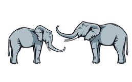 Friendly elephants trust in Royalty Free Stock Images