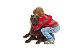 Friendly embraces a child and dog. White background Stock Photos