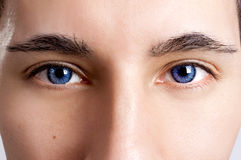 Friendly eyes Stock Images