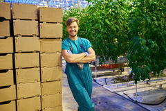 Friendly farmer at work in greenhouse. Stock Photos