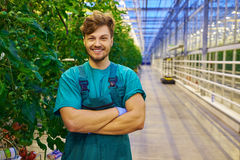 Friendly farmer at work in greenhouse Stock Photo
