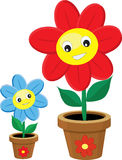 Friendly flowers in the pots Royalty Free Stock Images
