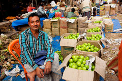 Friendly fruits dealer sell exotic fruits on the colorful city market Stock Photography