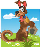 Friendly fun dog on color background Royalty Free Stock Images