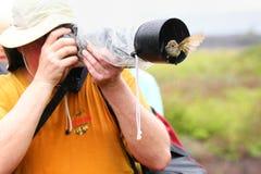 Friendly Galapagos flycatcher sitting on a lens hood, Santiago I Stock Photo