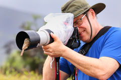 Friendly Galapagos flycatcher sitting on a lens hood, Santiago I Royalty Free Stock Image