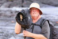 Friendly Galapagos flycatcher sitting on a lens hood, Santiago I Royalty Free Stock Images