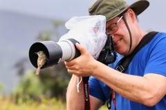 Friendly Galapagos flycatcher sitting on a lens hood, Santiago I Stock Photos