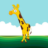 Friendly Giraffe Royalty Free Stock Photo