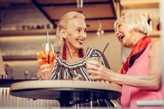 Friendly good-looking senior ladies actively communicating together royalty free stock images