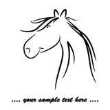 Friendly horse 01 Stock Photo