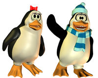 Friendly married penguin Royalty Free Stock Image