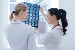 Friendly nurses discussing ct scan results at the roentgen cabinet. Sharing medical experience. Easygoing smiling young nurses working at the roentgen cabinet Royalty Free Stock Photography
