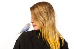 Friendly Parakeet Stock Photo