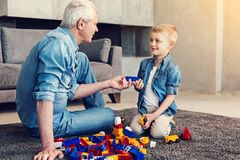 Friendly relatives playing bricks together. Bright toys. Relaxed smiling friendly relatives playing with colorful bricks while sitting on the floor together Stock Photography
