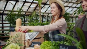 Friendly saleswoman packing organic vegetables during farm sale in greenhouse. Friendly saleswoman in apron and hat is packing organic food vegetables during stock footage