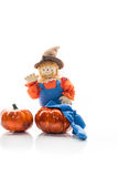 Friendly Seasonal Holiday Scarecrow In Overalls Stock Photos