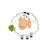 Friendly sheep Royalty Free Stock Photo