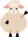 Friendly Sheep Stock Image