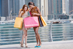 Friendly shopaholics. Two beautiful girl-friends in dresses hold. Ing shopping bags in their hands on the promenade while bragging about shopping with shopping Stock Photos