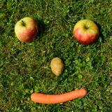 Friendly vegetable face. Friendly face from vegetables and fruit in the meadow royalty free stock photos