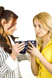 Friends Royalty Free Stock Photo