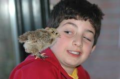 Friends. A little chicken standing on boys shoulder Stock Photo